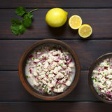 Chilean Ceviche Royalty Free Stock Photo