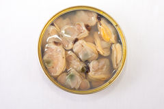 Chilean clams in a tin can Royalty Free Stock Image