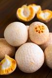 Chilean Edible Pinatra Mushrooms Stock Image