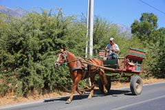 Chilean Farmer Driving Colorful Horse-Drawn Cart. Farmer travels by the traditional means of a colorful horse-drawn cart in rural Chile stock images