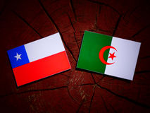 Chilean flag with Algerian flag on a tree stump isolated. Chilean flag with Algerian flag on a tree stump Royalty Free Stock Photo