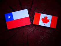 Chilean flag with Canadian flag on a tree stump isolated Stock Photography