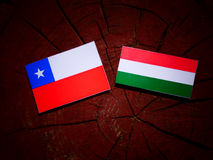 Chilean flag with Hungarian flag on a tree stump isolated. Chilean flag with Hungarian flag on a tree stump Royalty Free Stock Image