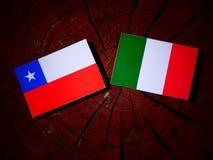 Chilean flag with Italian flag on a tree stump isolated. Chilean flag with Italian flag on a tree stump Stock Photography