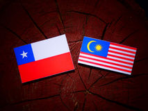 Chilean flag with Malaysian flag on a tree stump isolated Royalty Free Stock Image