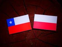 Chilean flag with Polish flag on a tree stump isolated. Chilean flag with Polish flag on a tree stump stock illustration