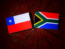 Chilean flag with South African flag on a tree stump isolated. Chilean flag with South African flag on a tree stump Stock Images