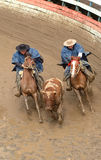 Chilean huasos in rodeo championship. Chilean huasos compete in rodeo championship Stock Photography