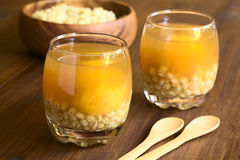Chilean Mote con Huesillo Drink. Traditional Chilean summer drink called Mote con Huesillo, made of dried peaches (huesillo), cooked husked wheat (mote) Stock Image