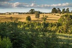 Chilean patagonia landscape stock photos