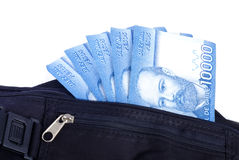 Chilean Pesos in a Money Belt Royalty Free Stock Photography