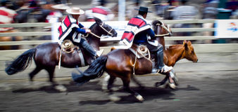 Chilean Rodeo  Royalty Free Stock Image