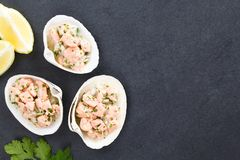 Chilean Salmon Ceviche Royalty Free Stock Photo