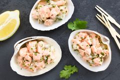 Chilean Salmon Ceviche Stock Photos