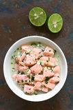 Chilean Salmon Ceviche Stock Photography