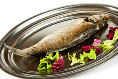 Chilean sea bass. Oven baked chilean sea bass with lettuce royalty free stock images