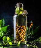 Chileense brandewijn aguardiente met gehele bos van druiven binnen fles royalty-vrije stock afbeeldingen
