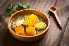 Chileense Cazuela DE Pollo Soup Royalty-vrije Stock Foto