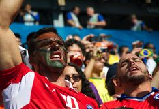 Chileense ventilator bij de Wereldbeker van FIFA van 2014 Stock Afbeeldingen