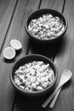 Chilenare Ceviche royaltyfri fotografi