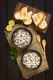 Chilenare Ceviche royaltyfria bilder