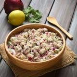 Chilenare Ceviche arkivfoton