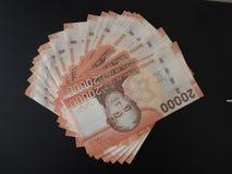 Chilenare tjugo tusen pesovalutasedel arkivfoto