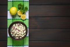 Chileno Ceviche Foto de Stock Royalty Free