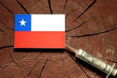 Chilensk flagga på en stubbe med injektionssprutan som injicerar pengar Arkivfoton