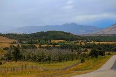 Chilensk Patagonia Arkivfoto