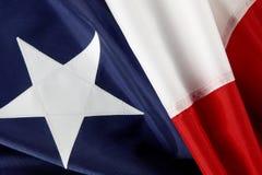 chilensk skjuten flaggamakro Royaltyfria Bilder