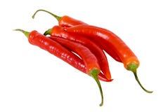 Chiles calientes Foto de archivo
