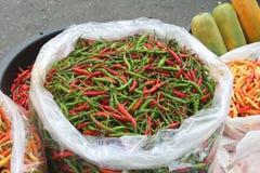 Chiles coloreados multi Foto de archivo libre de regalías