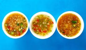 Chiles con el foco selectivo del pla del nam del saucePrik de los pescados Imagen de archivo libre de regalías
