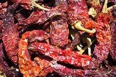 Chiles de Kashmiri Red Fotografía de archivo libre de regalías