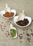 Chiles del habanero, chiles del chipotle y chiles del jalapeno Imágenes de archivo libres de regalías
