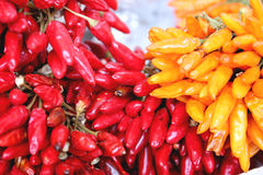 Chiles Royalty Free Stock Photo