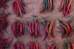 Chiles rizados rojos Imagen de archivo
