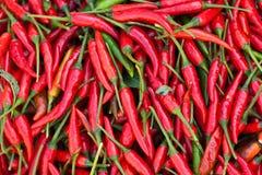 Chiles rojos foto de archivo