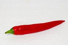 Chiles rojos Imagen de archivo libre de regalías