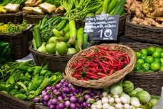 Chiles rojos, cal, calabaza amarga y diversa especie de berenjenas Foto de archivo libre de regalías
