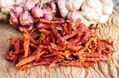 Chiles rojos calientes secados Imagen de archivo