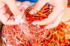 Chiles rojos calientes y picantes a mano, chile rojo secado, pimienta, chiles como fondo para la venta en un mercado local de la  Imágenes de archivo libres de regalías