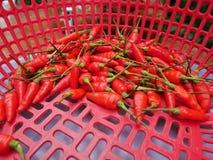 Chiles rojos en busket Fotografía de archivo