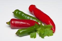 Chiles rojos y verdes con perejil y albahaca imagenes de archivo
