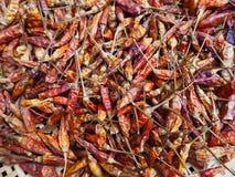 Chiles secados Fotos de archivo