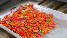 Chiles secados Foto de archivo