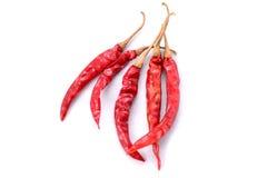 Chiles secos rojos Foto de archivo libre de regalías