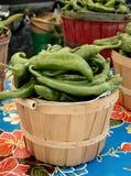 Chiles verdes Imágenes de archivo libres de regalías