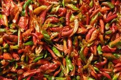 Chiles verdes y rojos Imagenes de archivo